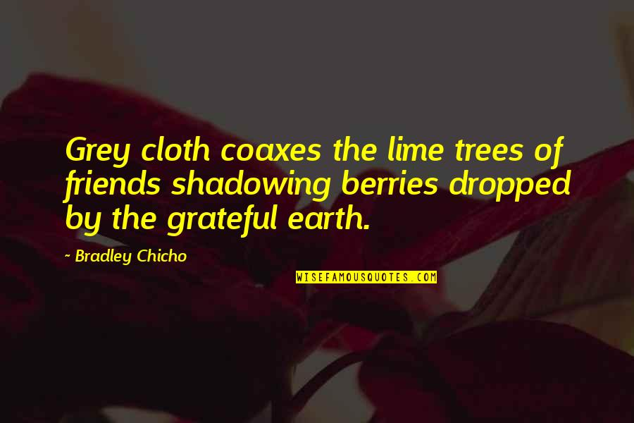 Grateful For My Friends Quotes By Bradley Chicho: Grey cloth coaxes the lime trees of friends