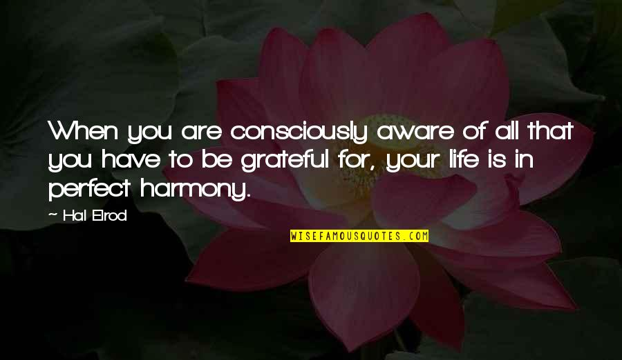 Grateful For You Quotes By Hal Elrod: When you are consciously aware of all that