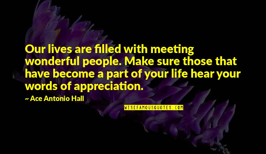 Gratefulness Quotes By Ace Antonio Hall: Our lives are filled with meeting wonderful people.
