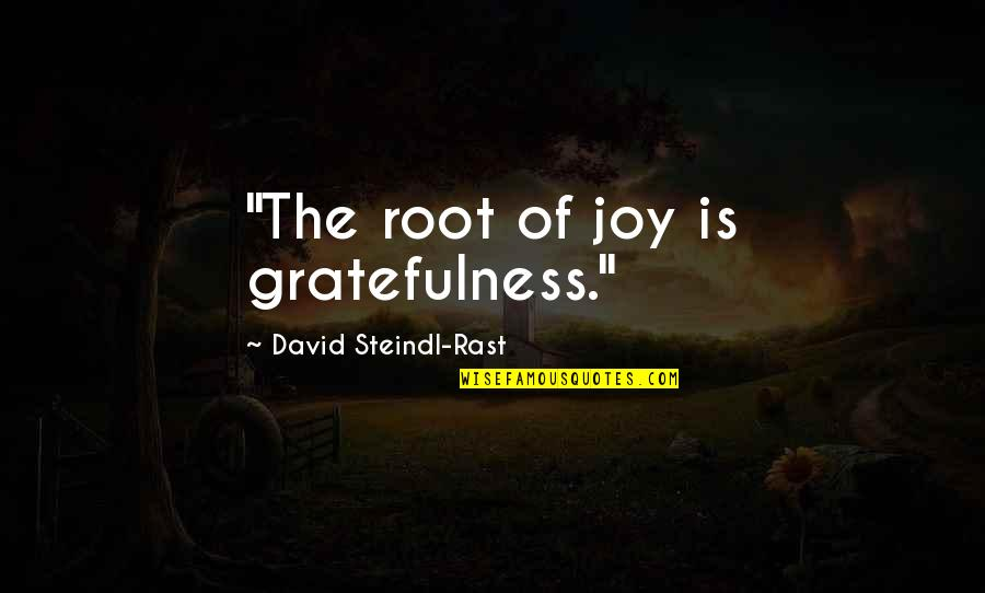 "Gratefulness Quotes By David Steindl-Rast: ""The root of joy is gratefulness."""