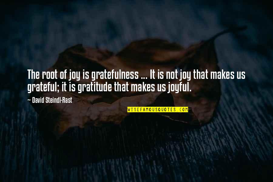 Gratefulness Quotes By David Steindl-Rast: The root of joy is gratefulness ... It
