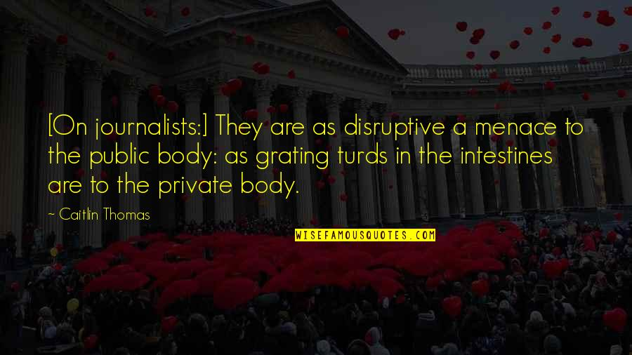Grating Quotes By Caitlin Thomas: [On journalists:] They are as disruptive a menace