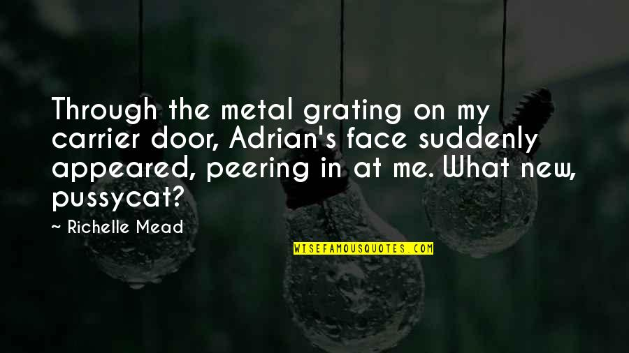 Grating Quotes By Richelle Mead: Through the metal grating on my carrier door,