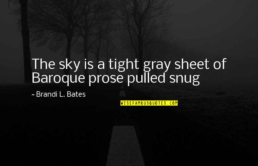 Gray Sky Quotes By Brandi L. Bates: The sky is a tight gray sheet of