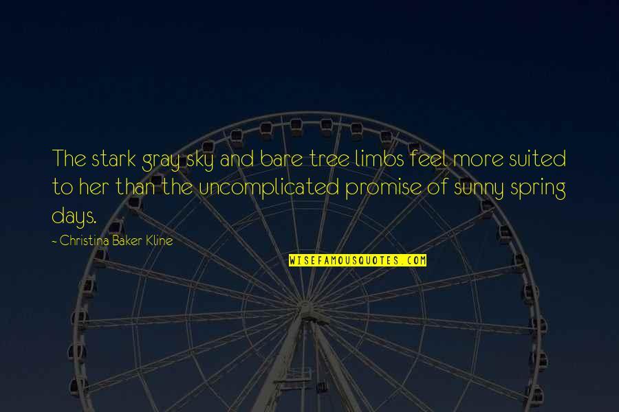Gray Sky Quotes By Christina Baker Kline: The stark gray sky and bare tree limbs