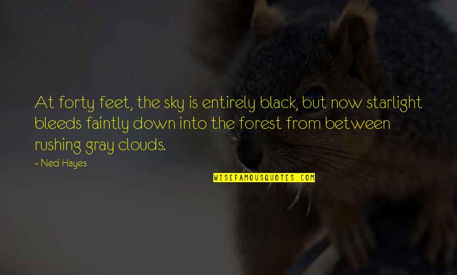 Gray Sky Quotes By Ned Hayes: At forty feet, the sky is entirely black,