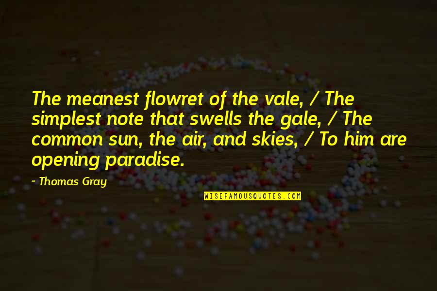 Gray Sky Quotes By Thomas Gray: The meanest flowret of the vale, / The