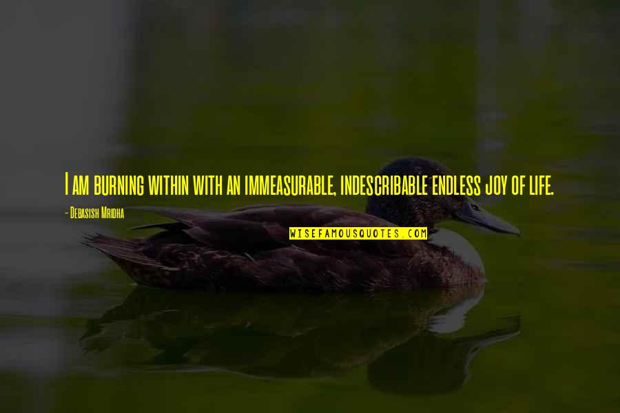 Great Sad Love Quotes By Debasish Mridha: I am burning within with an immeasurable, indescribable