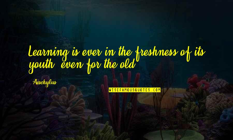 Green Acres Quotes By Aeschylus: Learning is ever in the freshness of its