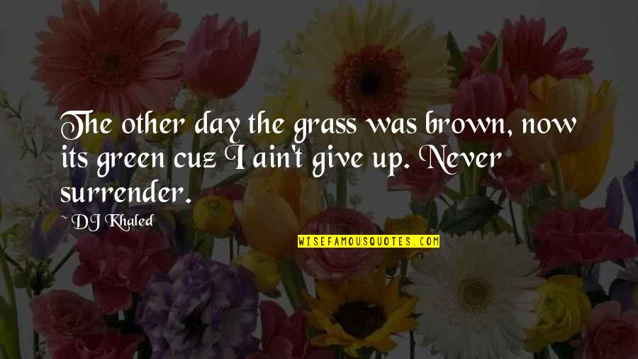 Green Grass Quotes By DJ Khaled: The other day the grass was brown, now