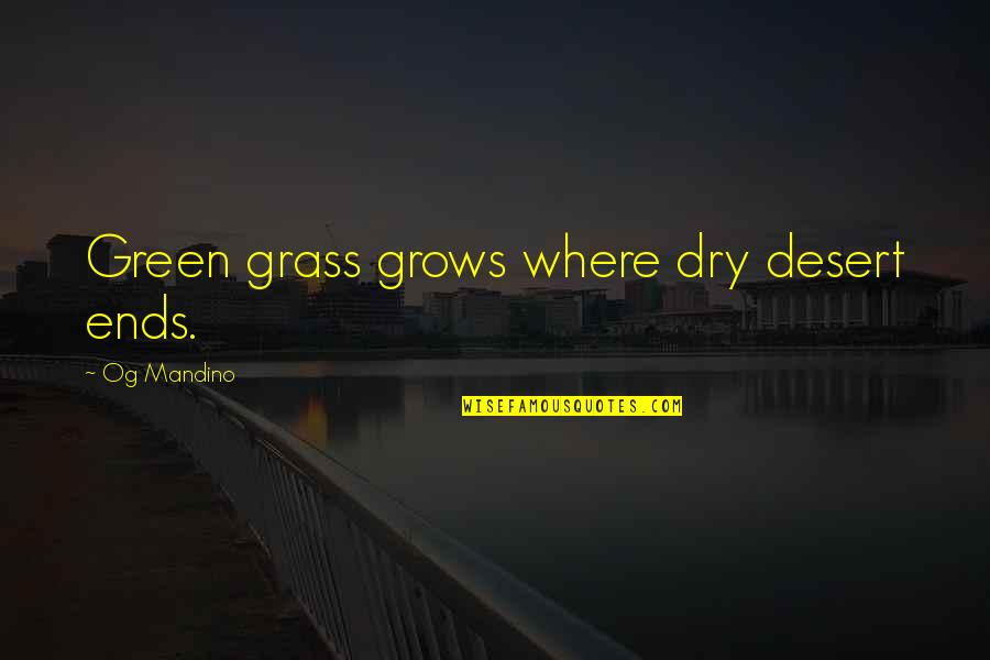 Green Grass Quotes By Og Mandino: Green grass grows where dry desert ends.