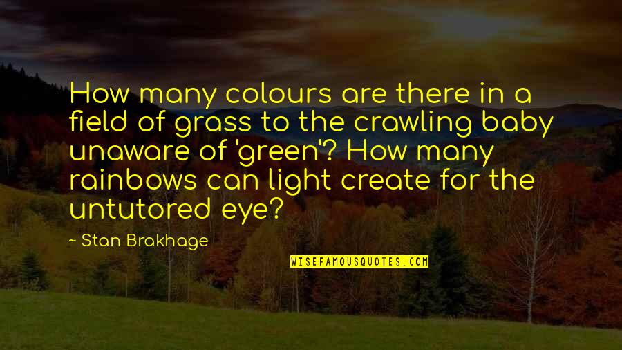 Green Grass Quotes By Stan Brakhage: How many colours are there in a field