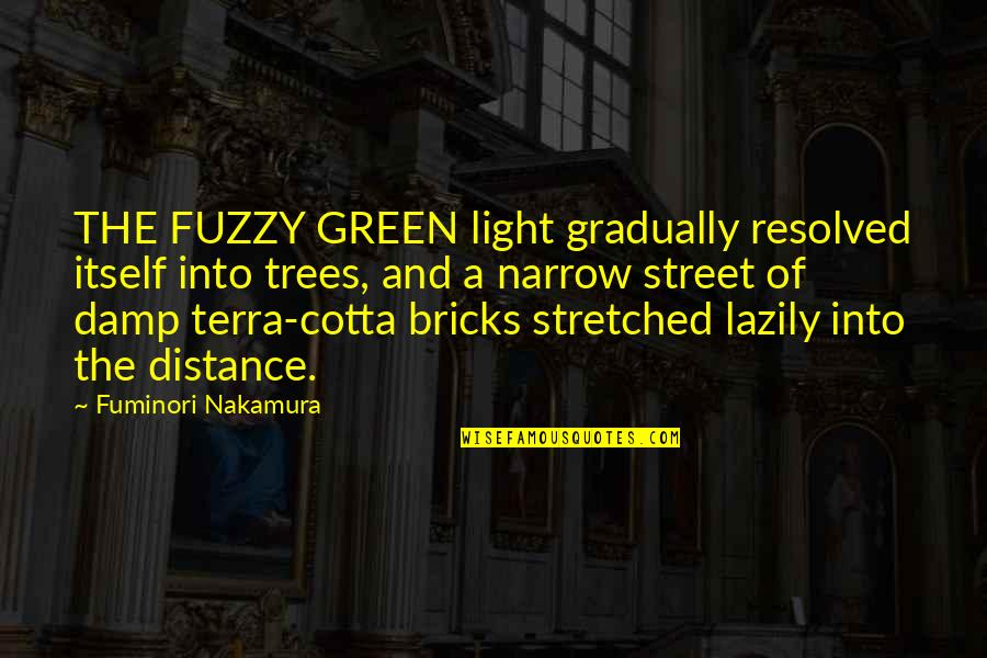 Green Street 3 Quotes By Fuminori Nakamura: THE FUZZY GREEN light gradually resolved itself into