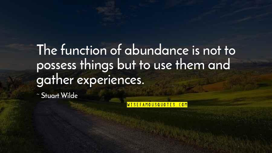 Green Street 3 Quotes By Stuart Wilde: The function of abundance is not to possess