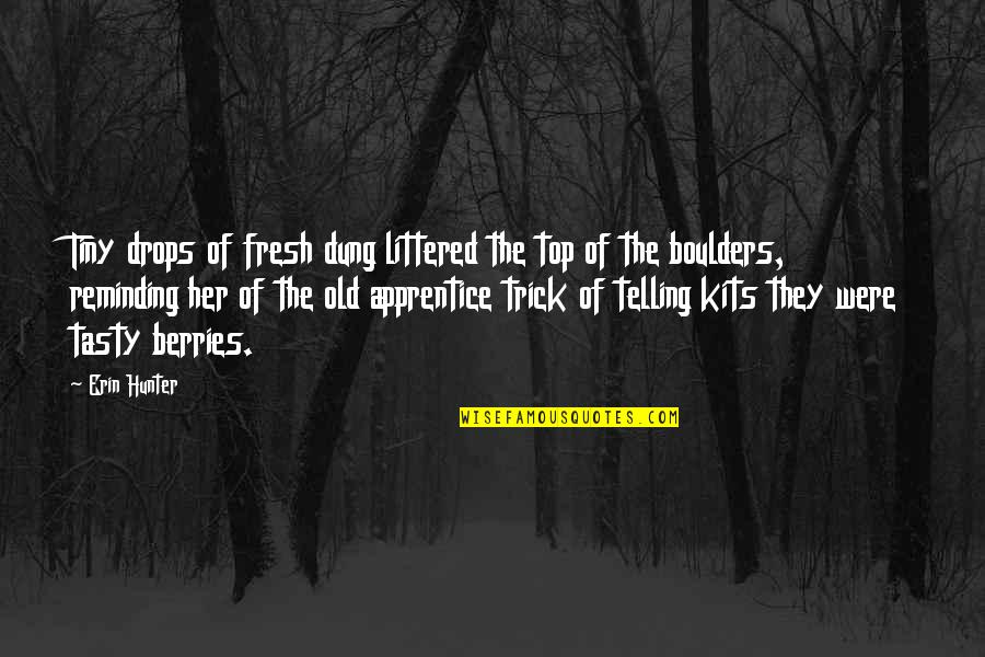 Greenly Quotes By Erin Hunter: Tiny drops of fresh dung littered the top