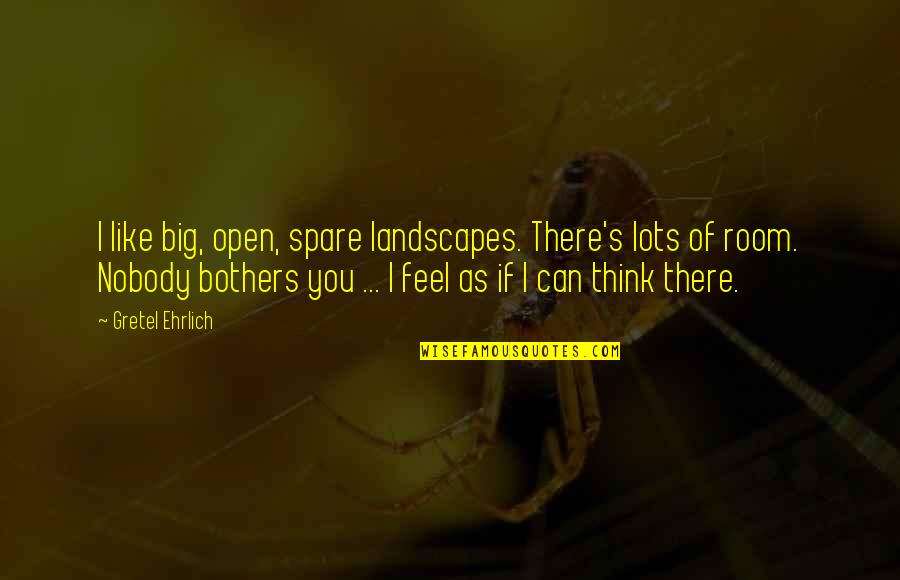 Gretel Ehrlich Quotes By Gretel Ehrlich: I like big, open, spare landscapes. There's lots