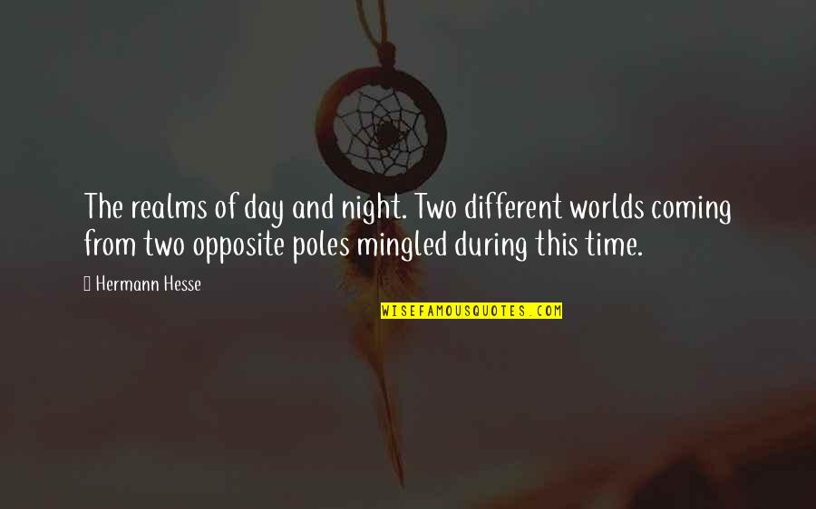 Grey's Anatomy Support System Quotes By Hermann Hesse: The realms of day and night. Two different