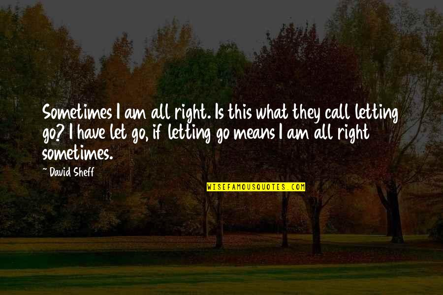 Grief And Acceptance Quotes By David Sheff: Sometimes I am all right. Is this what