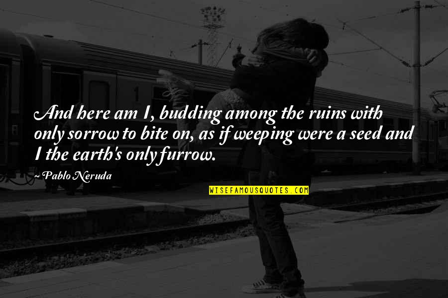 Grieving Quotes By Pablo Neruda: And here am I, budding among the ruins