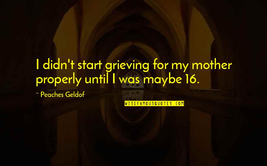Grieving Quotes By Peaches Geldof: I didn't start grieving for my mother properly