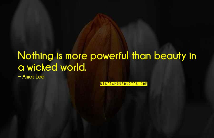 Grigori Gorin Quotes By Amos Lee: Nothing is more powerful than beauty in a