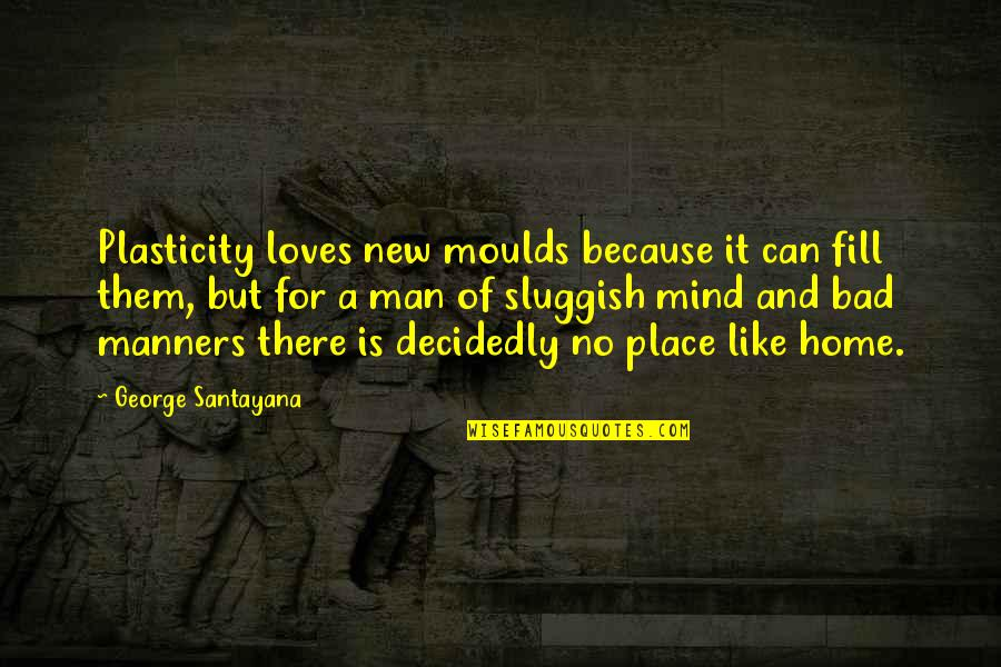Grimaced Quotes By George Santayana: Plasticity loves new moulds because it can fill
