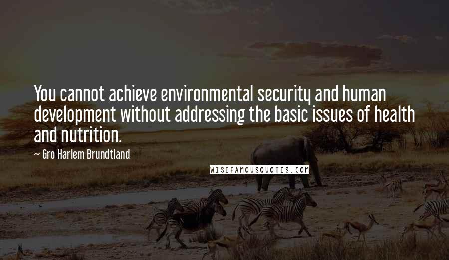 Gro Harlem Brundtland quotes: You cannot achieve environmental security and human development without addressing the basic issues of health and nutrition.