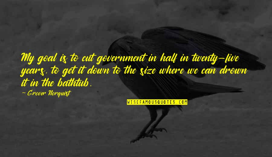 Grover Norquist Quotes By Grover Norquist: My goal is to cut government in half