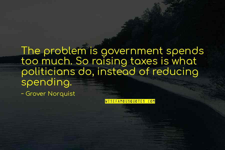 Grover Norquist Quotes By Grover Norquist: The problem is government spends too much. So