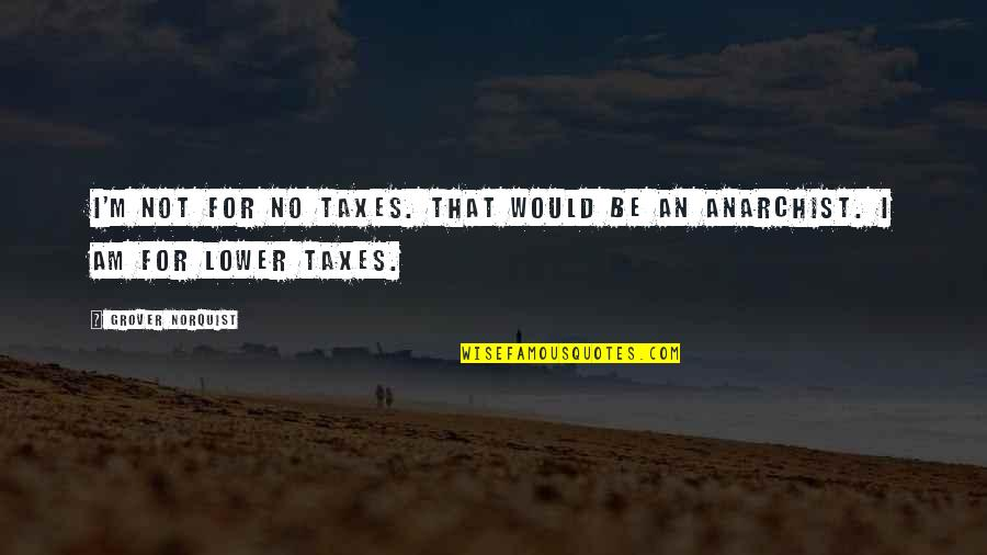 Grover Norquist Quotes By Grover Norquist: I'm not for no taxes. That would be