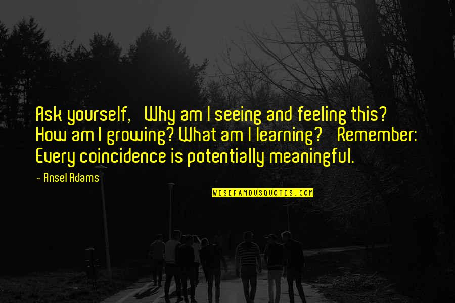 Growing And Learning Quotes By Ansel Adams: Ask yourself, 'Why am I seeing and feeling