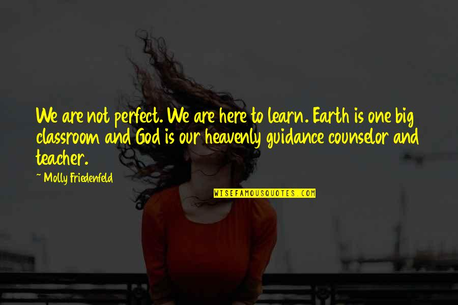 Guidance And Love Quotes By Molly Friedenfeld: We are not perfect. We are here to