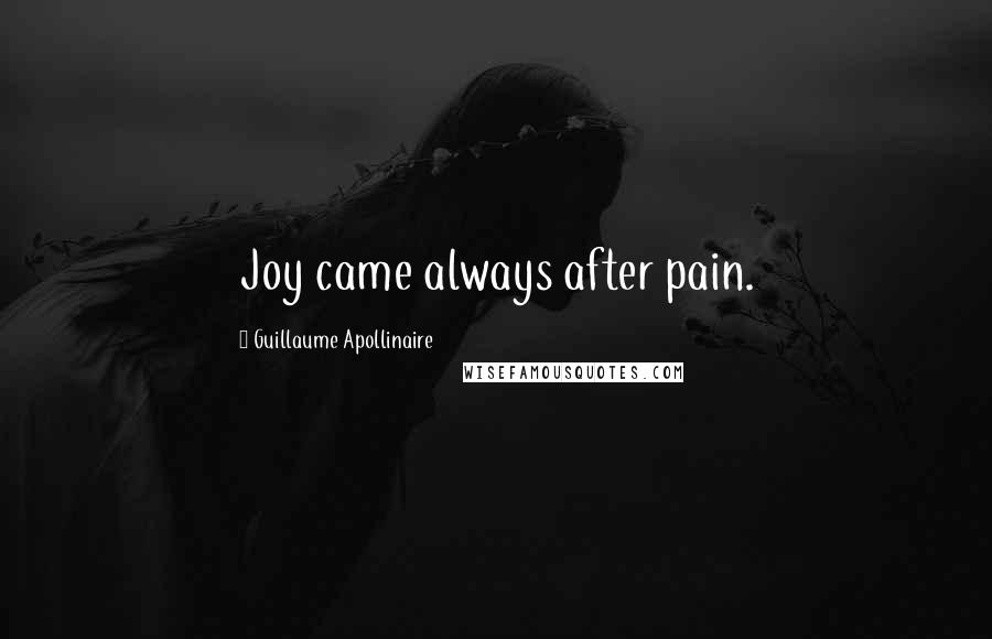 Guillaume Apollinaire quotes: Joy came always after pain.