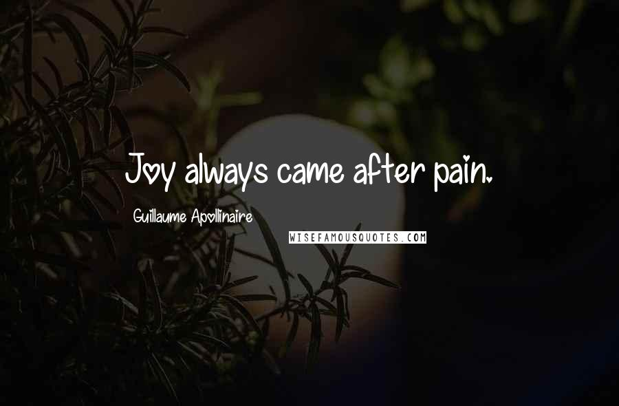 Guillaume Apollinaire quotes: Joy always came after pain.
