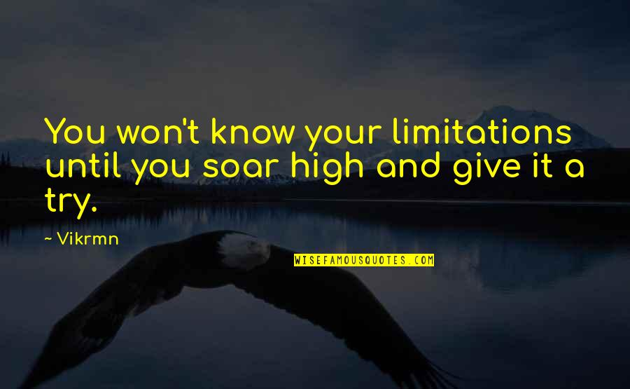 Guitar Quotes And Quotes By Vikrmn: You won't know your limitations until you soar