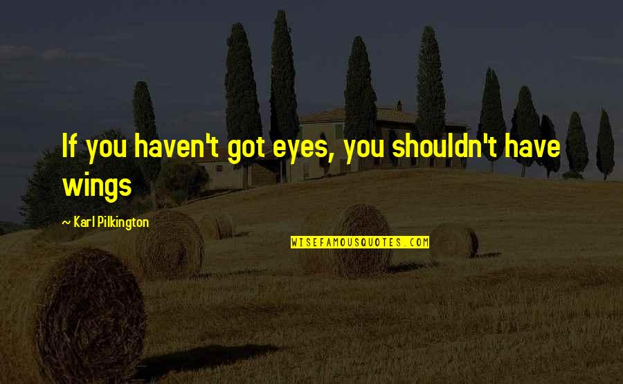 Gully Foyle Quotes By Karl Pilkington: If you haven't got eyes, you shouldn't have