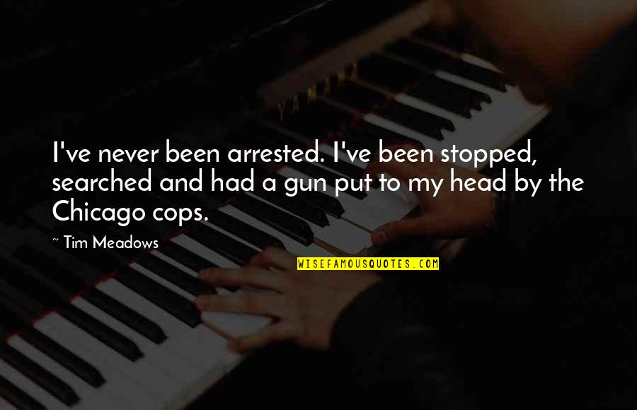 Gun To The Head Quotes By Tim Meadows: I've never been arrested. I've been stopped, searched