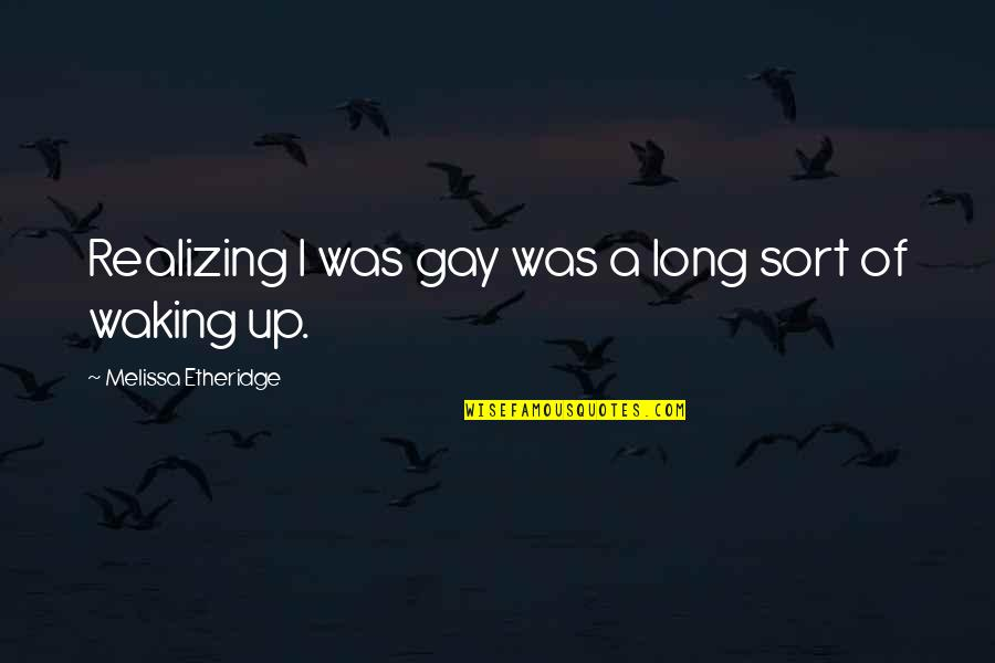 Gungee Quotes By Melissa Etheridge: Realizing I was gay was a long sort