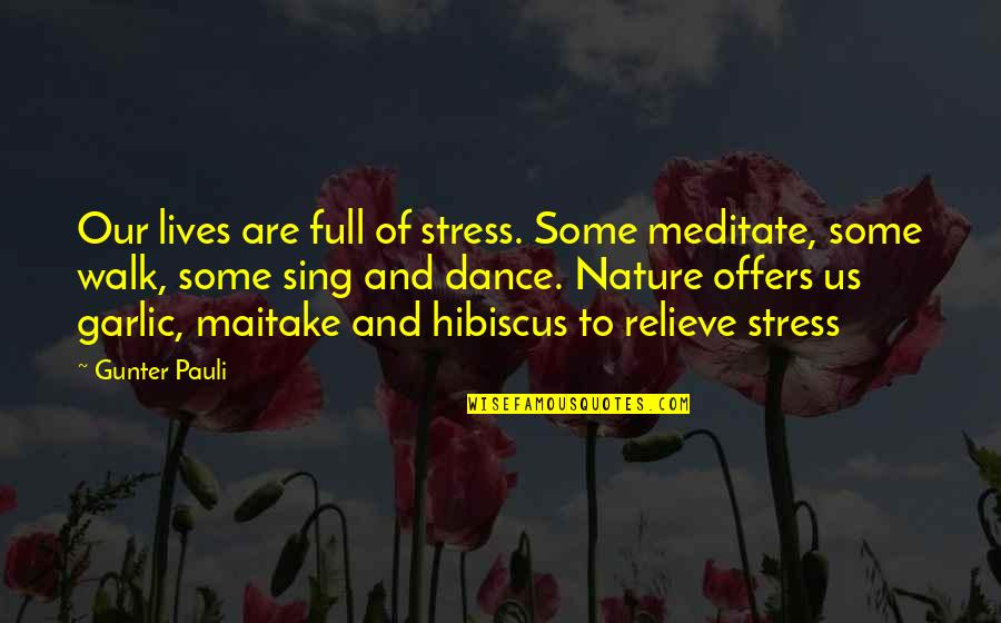 Gunter Pauli Quotes By Gunter Pauli: Our lives are full of stress. Some meditate,