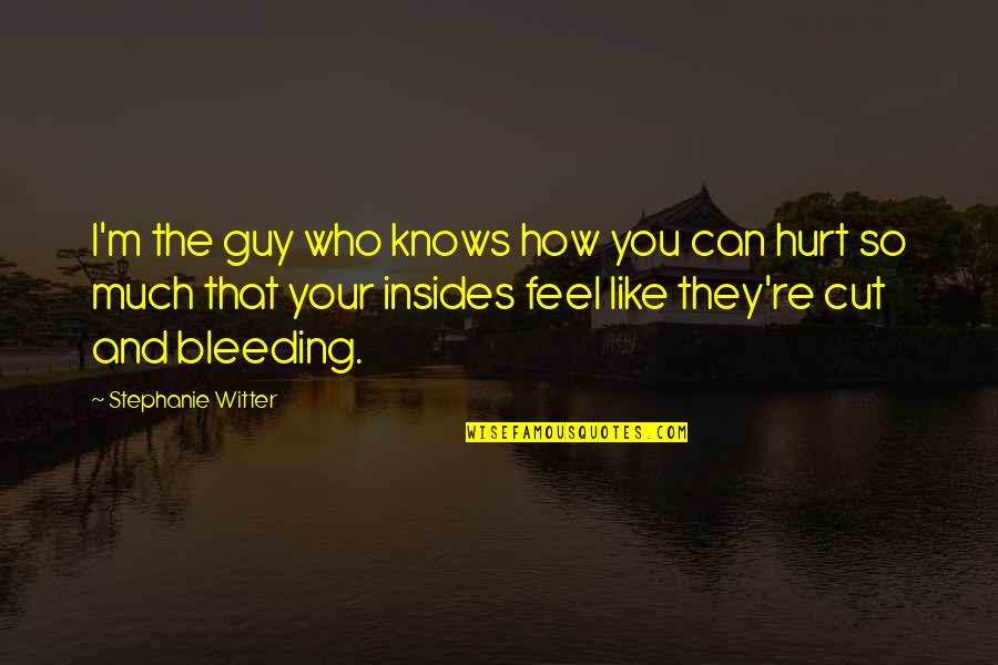 Guy That You Like Quotes By Stephanie Witter: I'm the guy who knows how you can