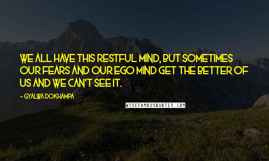 Gyalwa Dokhampa quotes: We all have this restful mind, but sometimes our fears and our ego mind get the better of us and we can't see it.