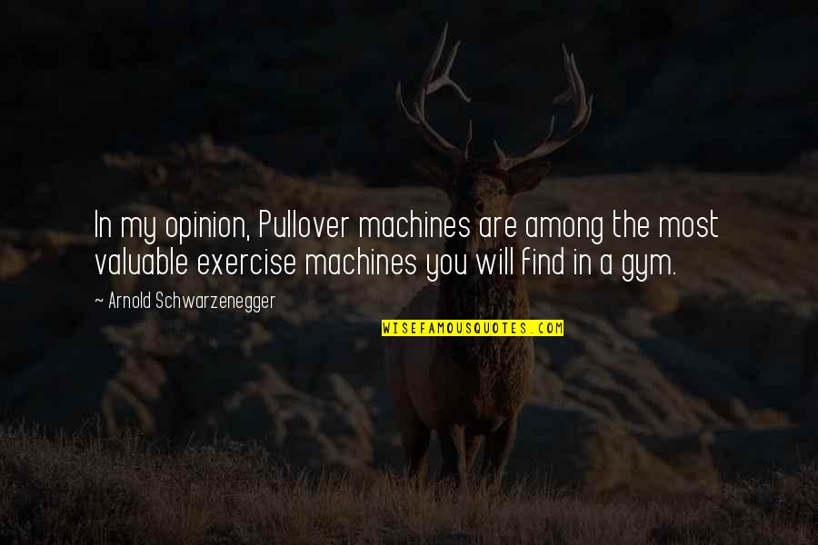 Gym Exercise Quotes By Arnold Schwarzenegger: In my opinion, Pullover machines are among the