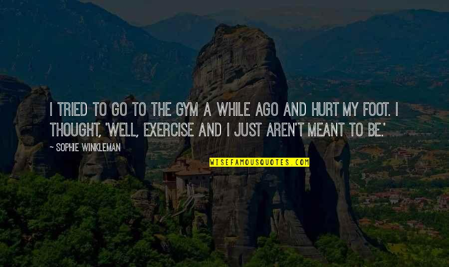 Gym Exercise Quotes By Sophie Winkleman: I tried to go to the gym a