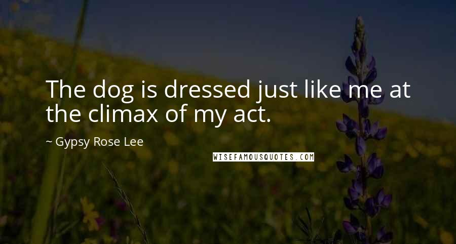 Gypsy Rose Lee quotes: The dog is dressed just like me at the climax of my act.