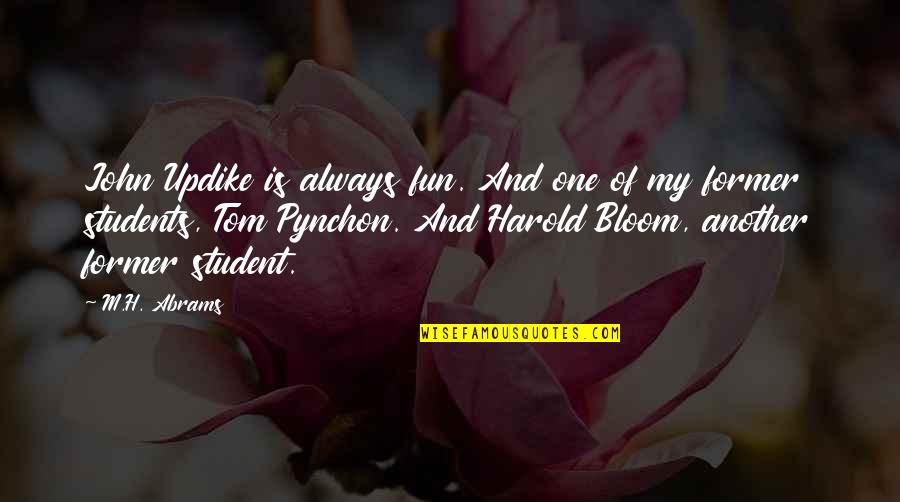 H And M Quotes By M.H. Abrams: John Updike is always fun. And one of