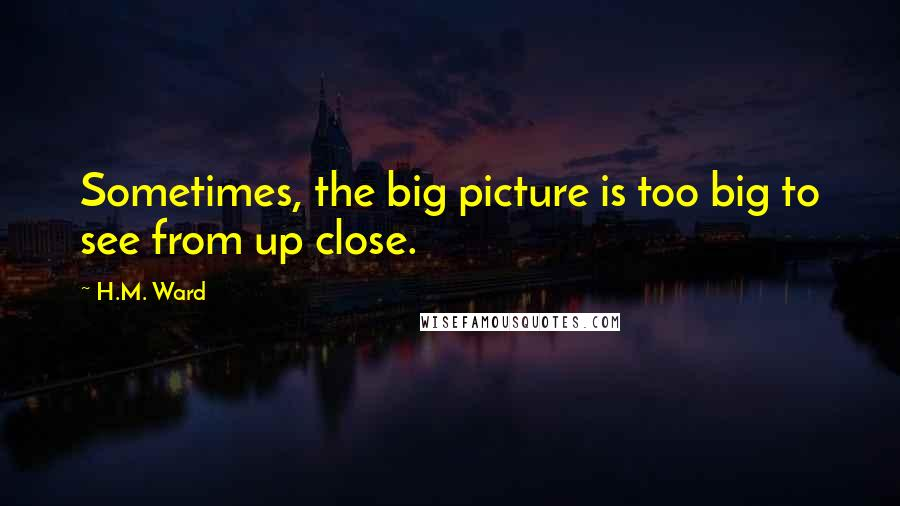 H.M. Ward quotes: Sometimes, the big picture is too big to see from up close.