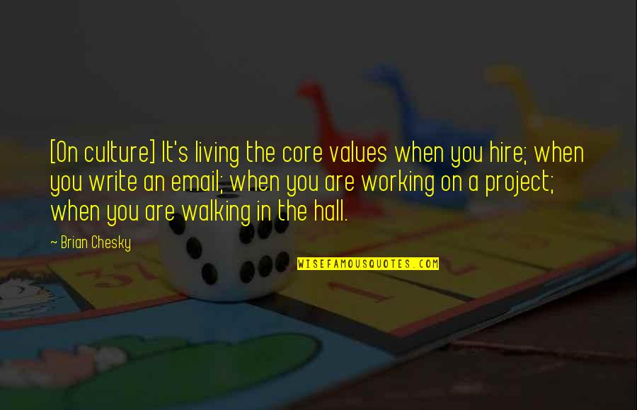 H2o Footprints In The Sand Quotes By Brian Chesky: [On culture] It's living the core values when