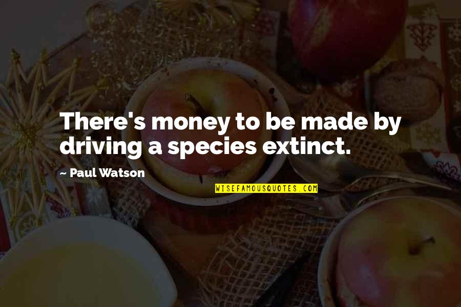 Habanero Pepper Quotes By Paul Watson: There's money to be made by driving a