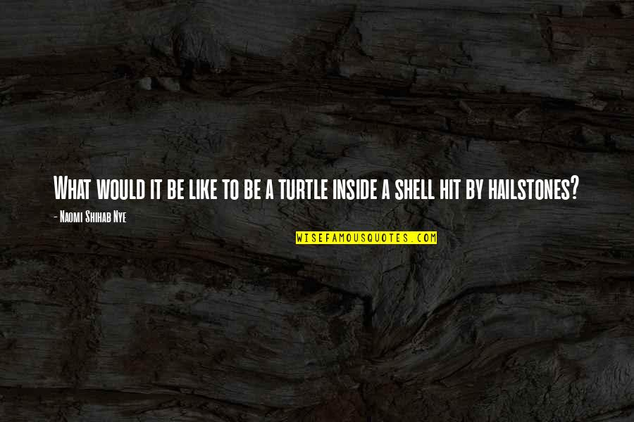Hailstones Quotes By Naomi Shihab Nye: What would it be like to be a