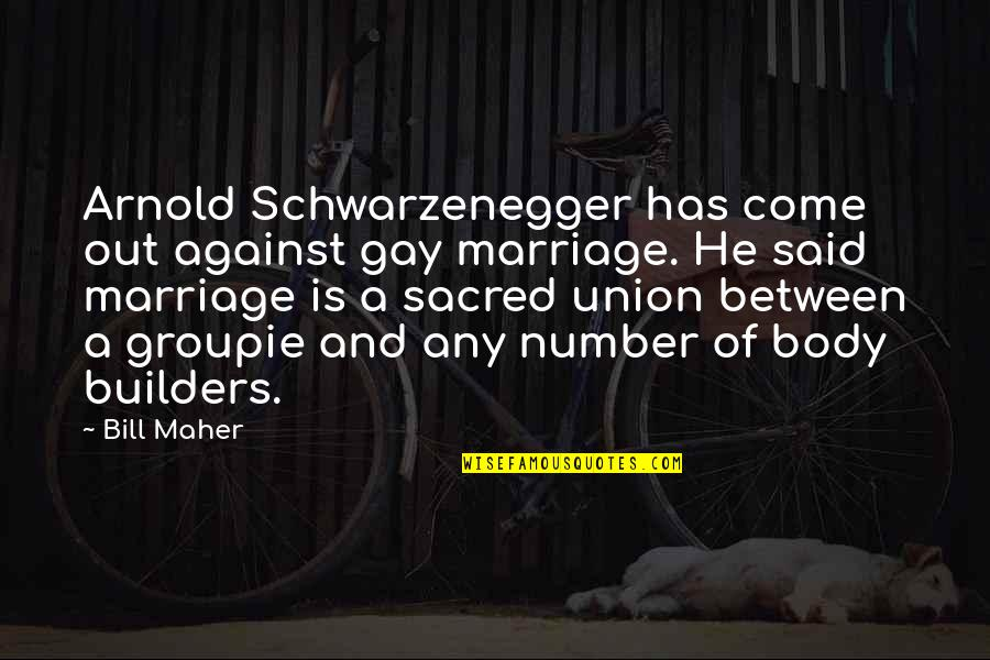 Hair Loss Inspirational Quotes By Bill Maher: Arnold Schwarzenegger has come out against gay marriage.